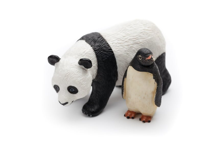 Insurance Agents, Pandas, Penguins and Hummingbirds